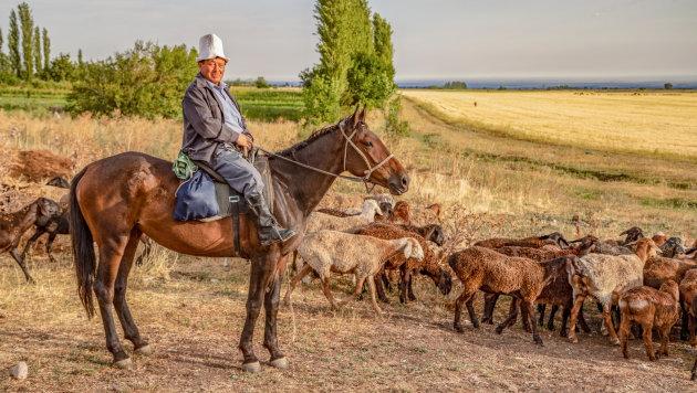 De Kirgizische hoed