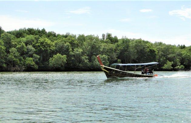 Rondvaren tussen de mangrove bossen.