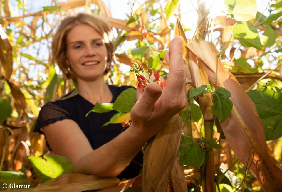 De pronkbonen van Michaela zijn razend populair in Steiermark. © Glamur