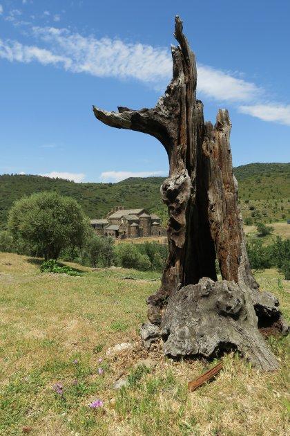 Zicht op klooster