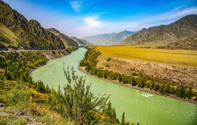 Altai gebied