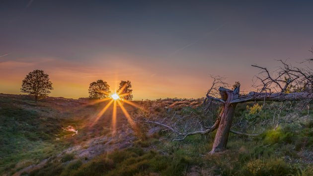 Sunset Mookerheide