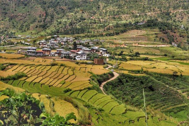 In de groene wereld van Bhutan