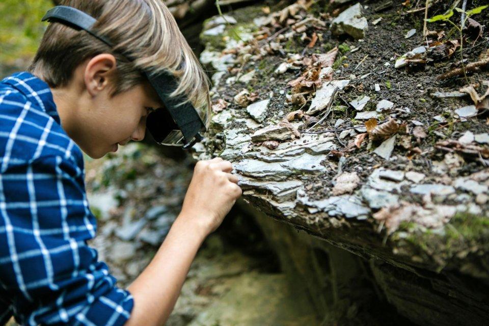 Ontdek dinosauriërs in het fossielenmuseum van Monte San Giorgio CREDIT Luca Crivelli