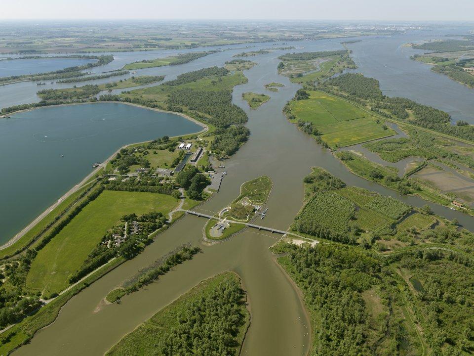 Biesbosch van boven. ANP Photo - Your Captain