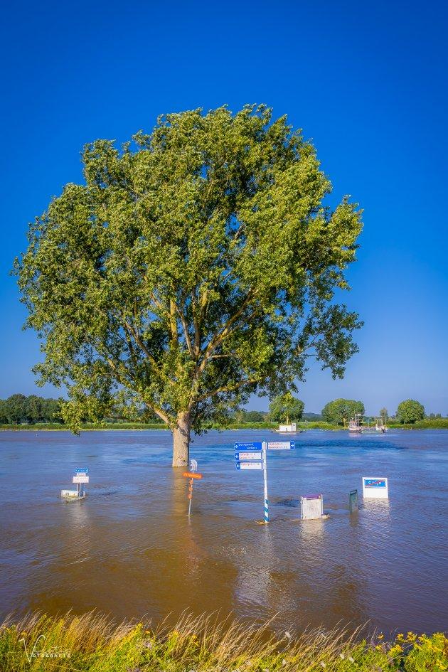 Hoog water in Cuijk