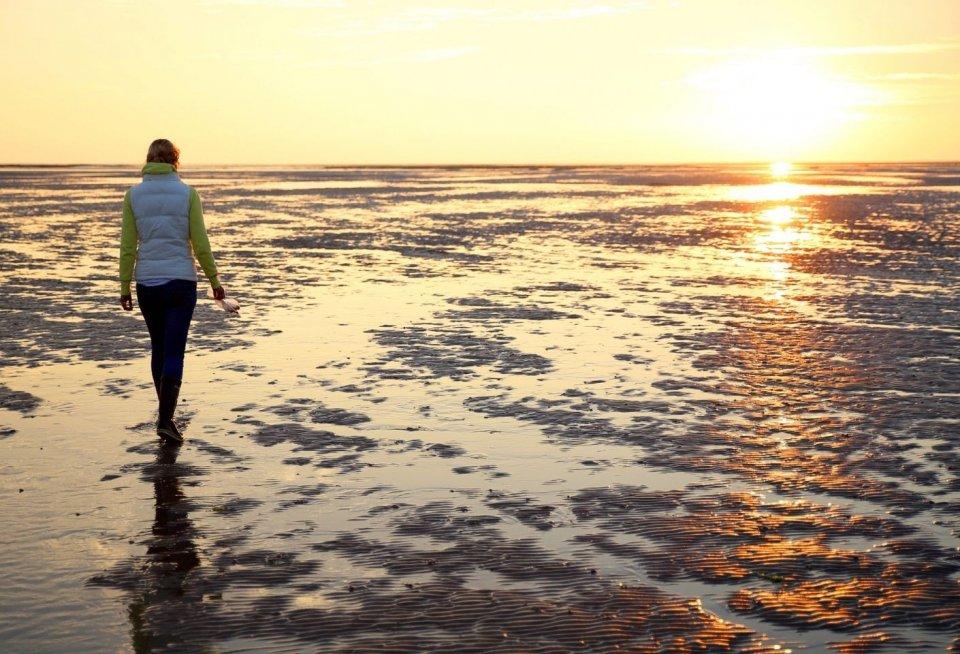 Wadlopen op de Waddenzee. Foto: Claffra/ iStock