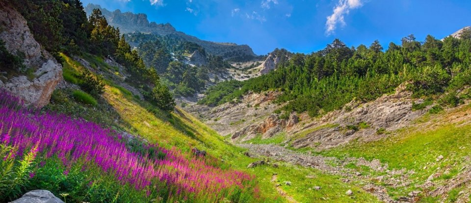 Wandeltochten Griekse Olympus - Getty Images