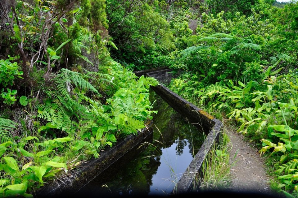 Wandeltochten - Madeira - Getty Images Pro
