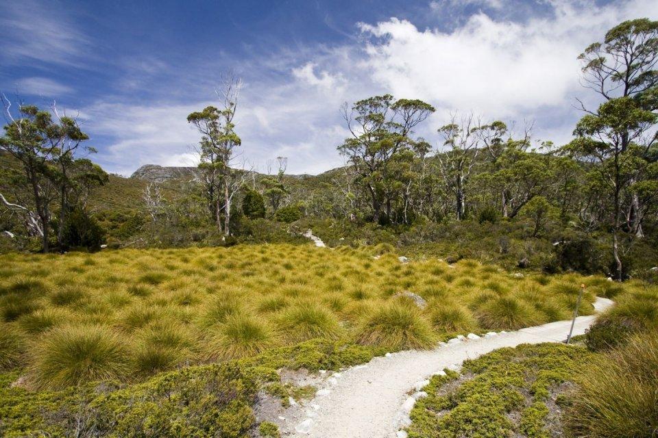 Wandeltochten - Cradle Mountain Australië - Getty Images