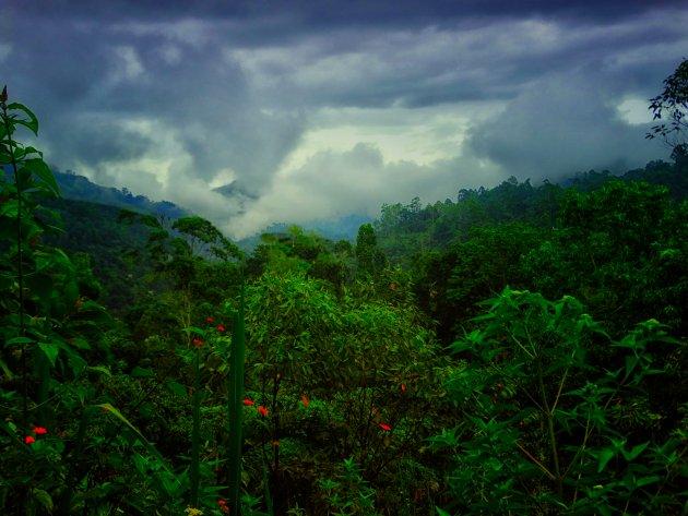 Sri Lanka in de regen