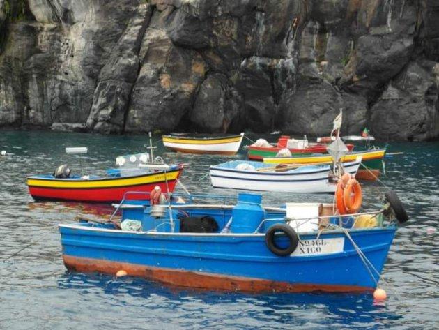 Vrolijke bootjes