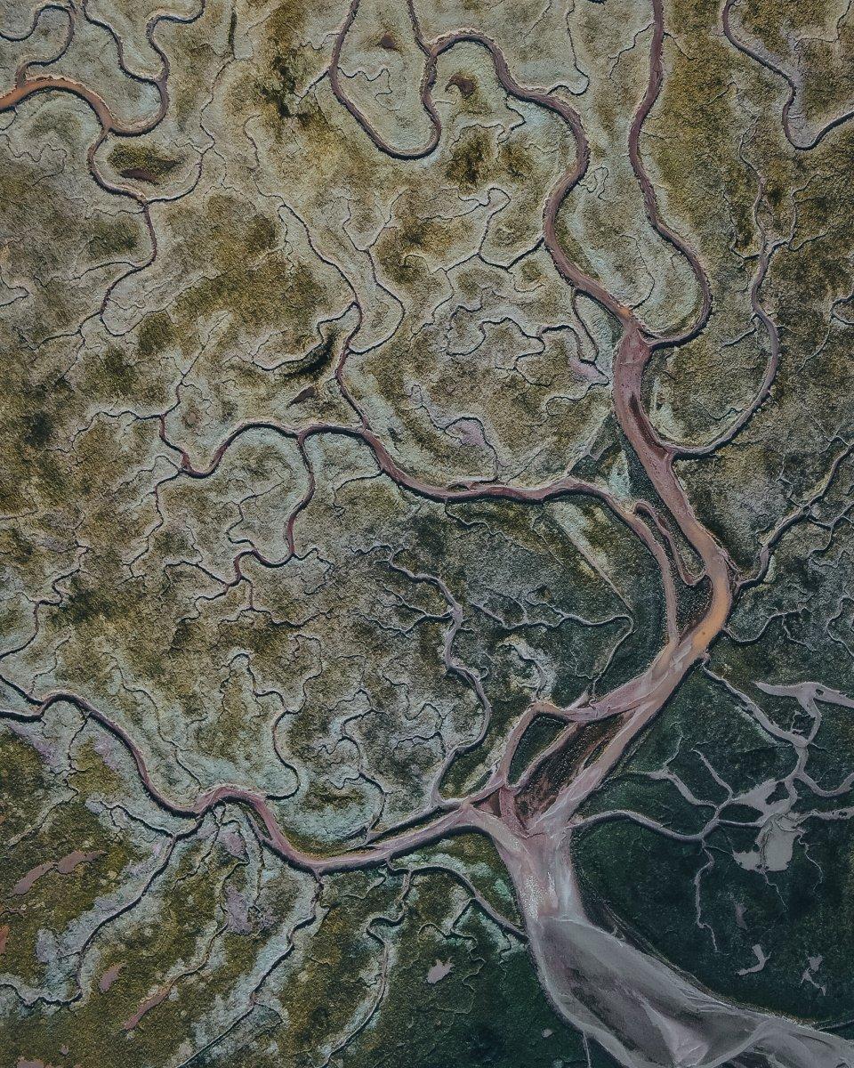 Het Verdronken Land van Saeftinghe door Henry Verhorst
