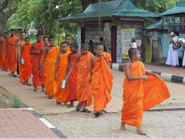 Jonge monniken