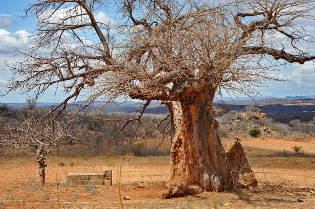 Landschap Zuid Tanzania