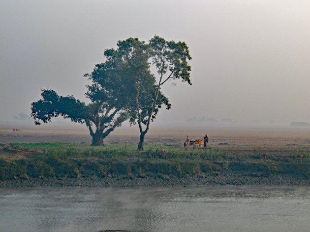 Landschap Birma vanaf de rivier tussen Sittwe en Mrauk U