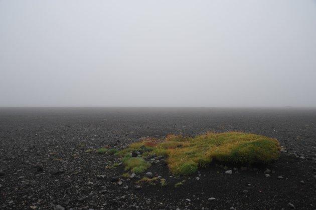 Lavaveld Ijsland
