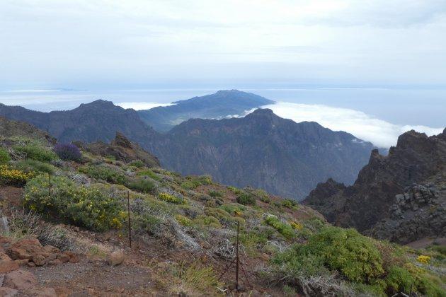 Natuur op la Palma