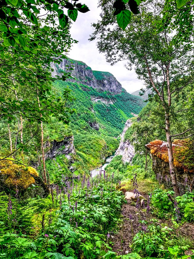 Aurlandsdalen lopen