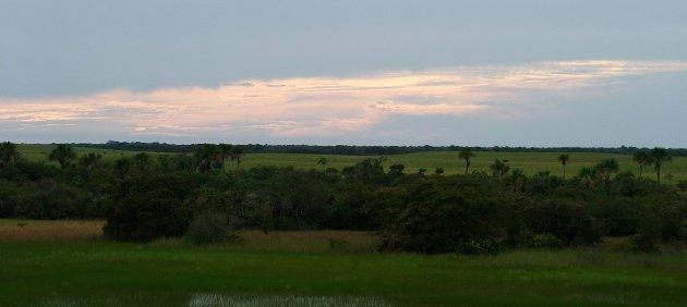Avondrood in de Llanos