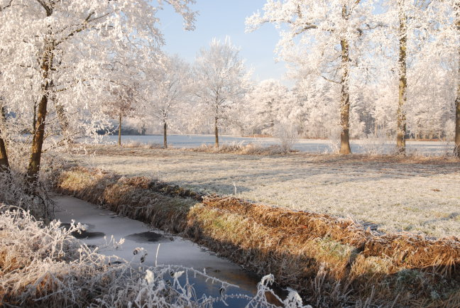 Winterplaatje