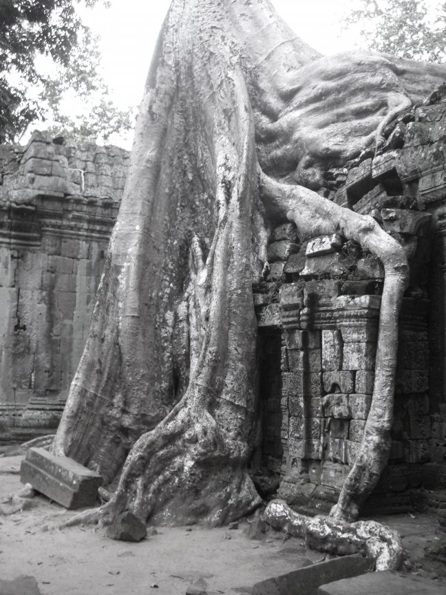 Angkor, Siem Reap