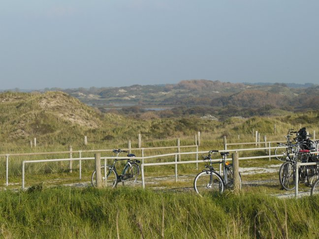 Bicycles in the dunes