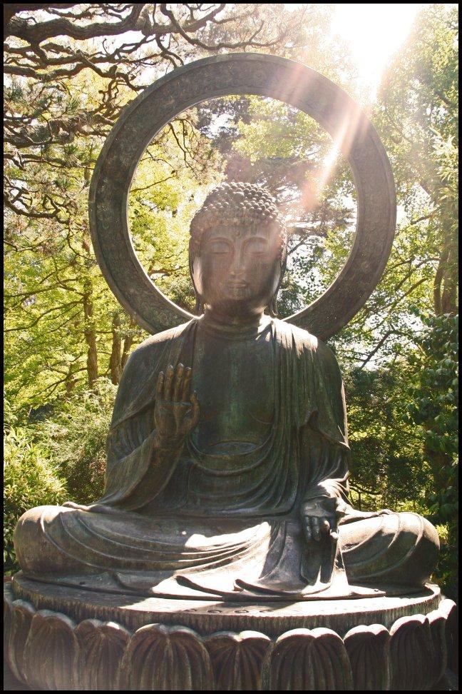 sunshine buddha