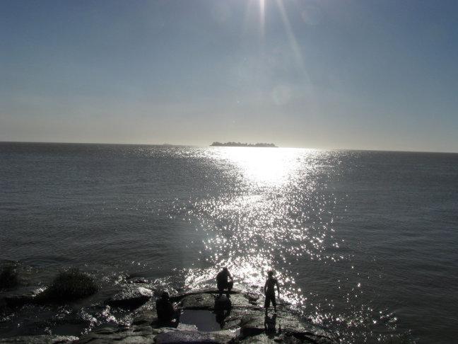 Vissers Rio Plata