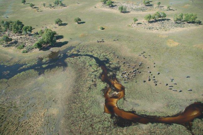 Okavango van bovenaf