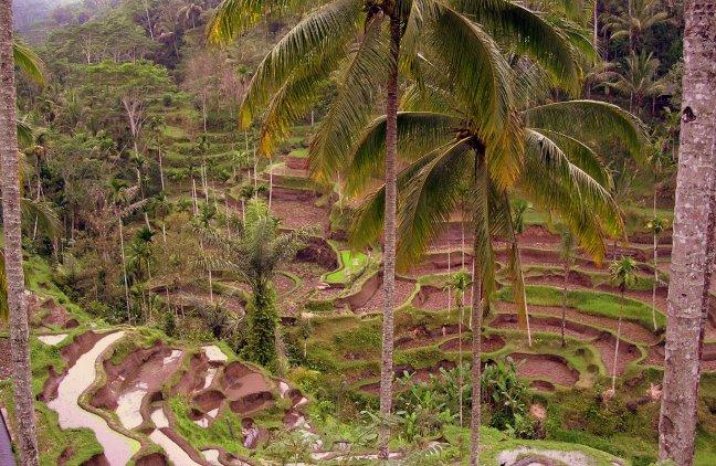 Het échte Bali