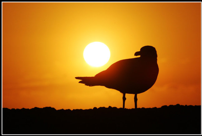 zonsondergang!