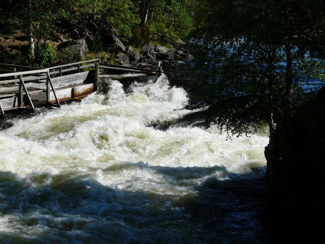 Watermolen in nationaal park