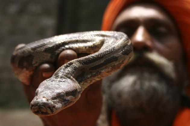 slangetje