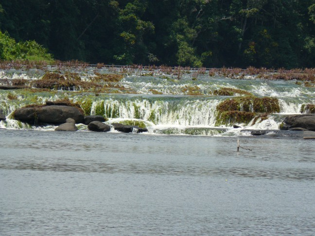 Tapawatra watervallen