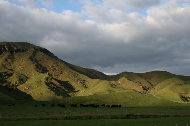Rondom Waitomo