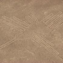 '139005' door neeltjedrijfhout