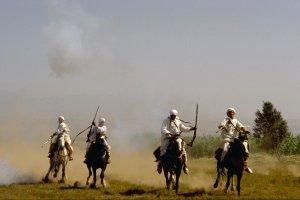 Berberattack