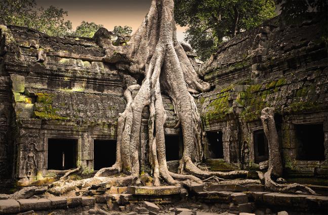 Dapau Wat