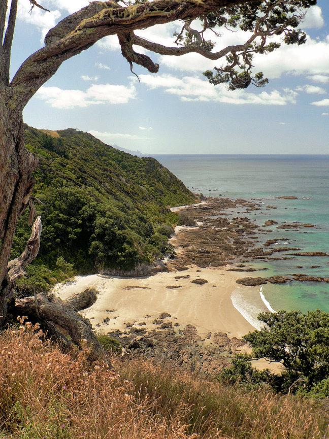 Doorkijkje vanaf Mangawhai Cliffs