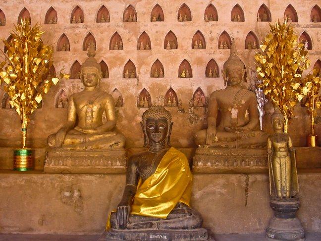 prachtige boeddha's