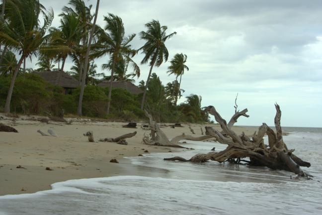 Verlaten strand?