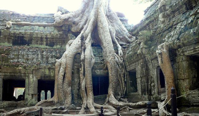 Tempels