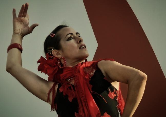 Viva Flamenco, viva l'arte
