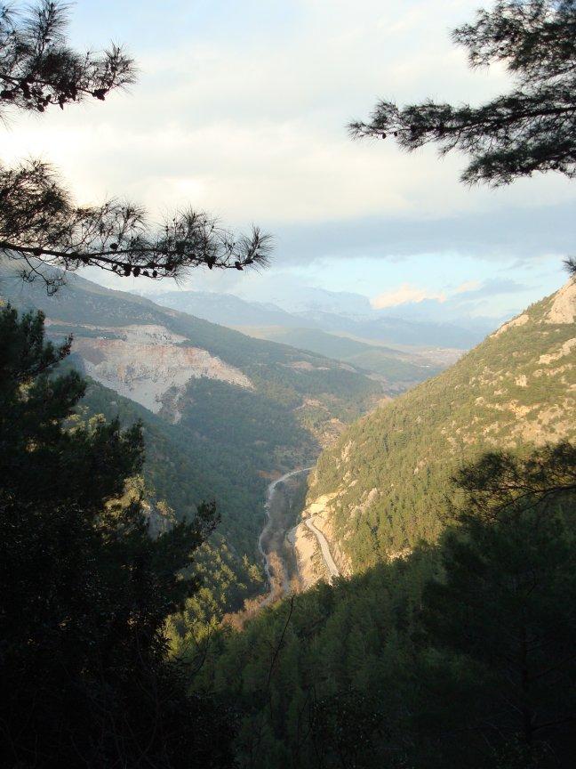 Bergen Mahmutlar, Alanya