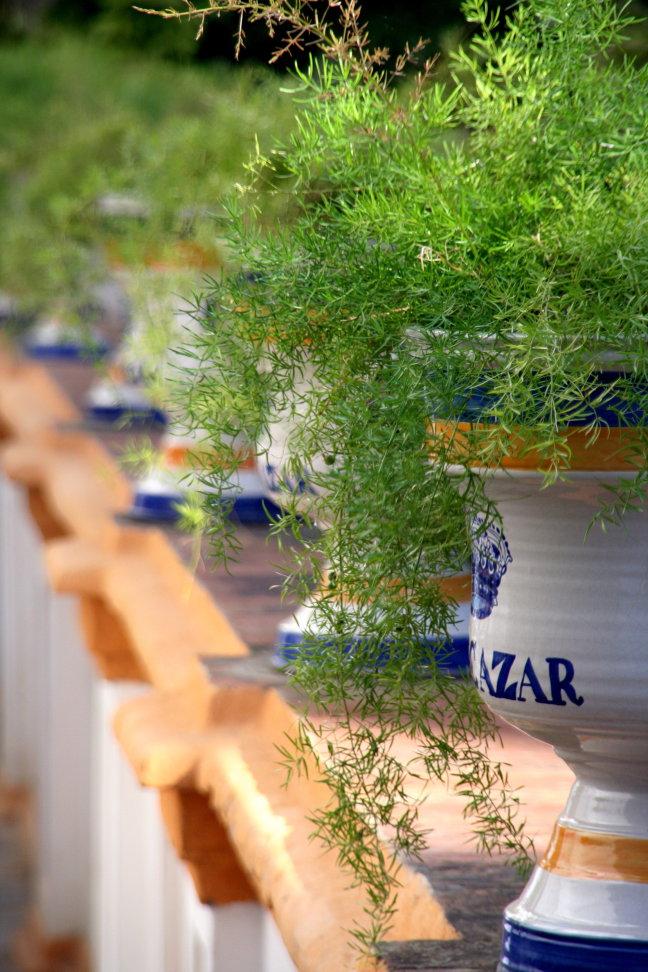 Detail Real Alcazar Sevilla