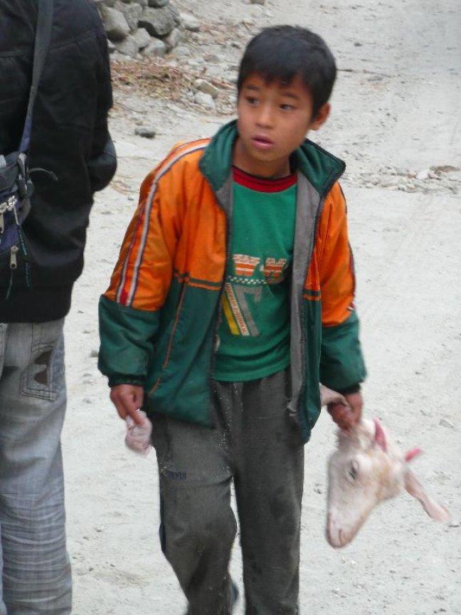 Jongetje met geitekop