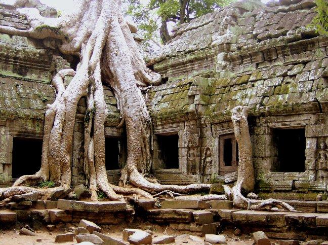 jungle tempel