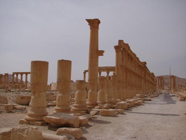 Palmyra 2