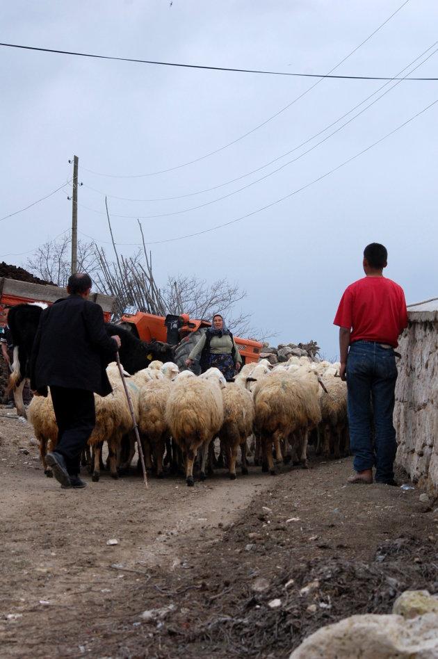 Boerenfamilie aan't werk